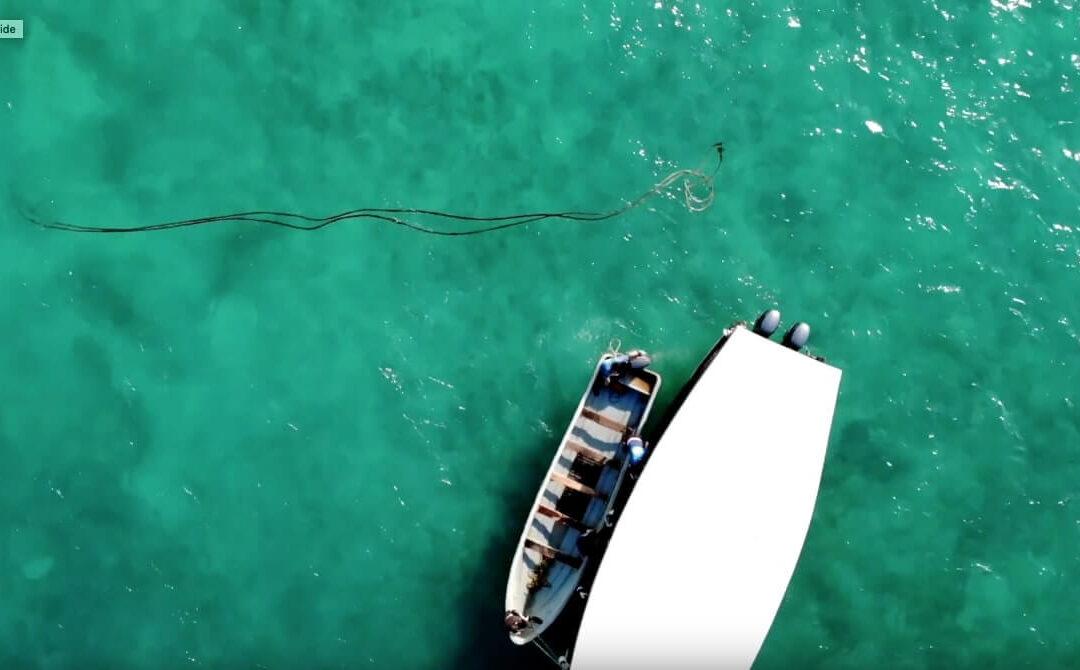 Prøv at dykke under dit ophold på Zanzibar